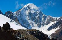 Живые тест-объекты «расскажут» ученым о таянии ледника Актру