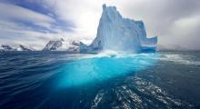 Разработки ученых БИ ТГУ помогут сохранять арктические экосистемы