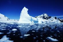 В арктических морях стало меньше льда и больше макропластика