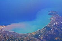 Ученые ТГУ оценят современное состояние фауны Средиземного моря