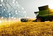 В ТГУ искусственный интеллект научат разбираться в земледелии