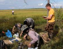 В арктической зоне РФ озера превращаются в болота